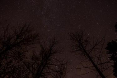 haind-woods-stars-redo-7