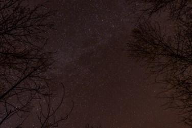 haind-woods-stars-redo-9