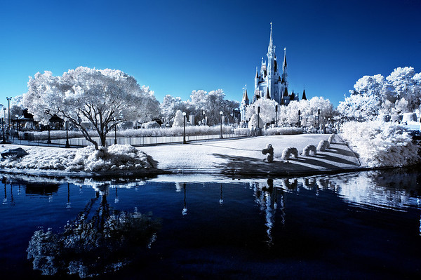 Infrared photo of the Magic Kingdom at Walt Disney World. Tips for getting into infrared photography: https://www.disneytouristblog.com/infrared-photography-guide-tips/