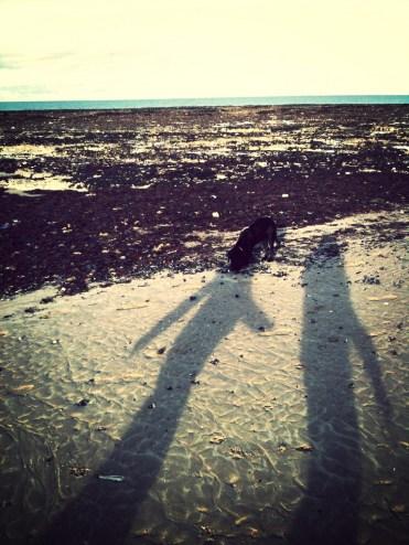 Walking Lottie.