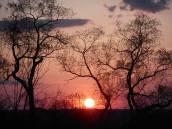 sunset 5-3-15- a