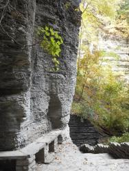 treman-park-gorge-wall-with-stone-bench-upper-treman-park-gorge-pathways-and-stone-stairs-10-7-15