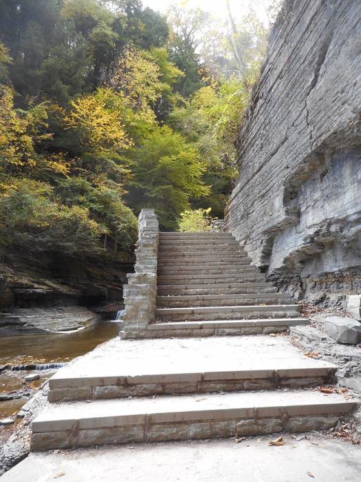 treman-park-stairway