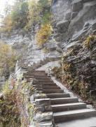 treman-upper-treman-park-gorge-pathways-and-stone-stairs-10-7-15