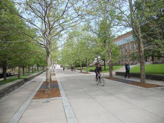 Ho Plaza- Cornell University 5-19-14