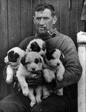 Tom Crean 1915