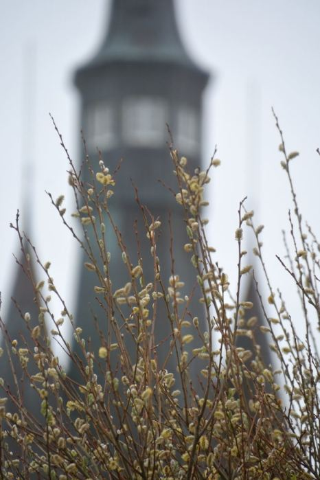 wangerooge westturm 07