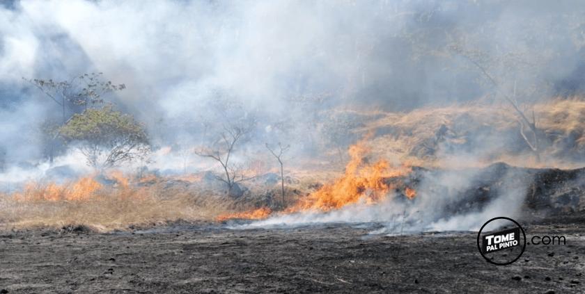 Incendio en la ruta 27 este Sabádo