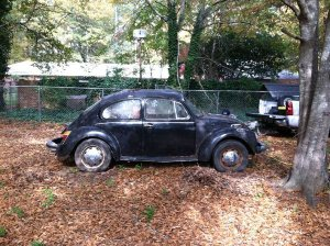 Our 74 Super Beetle