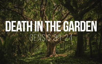 Death in the Garden – Genesis 3:1-24