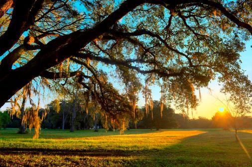 Charles Pickney National Historical Site, South Carolina