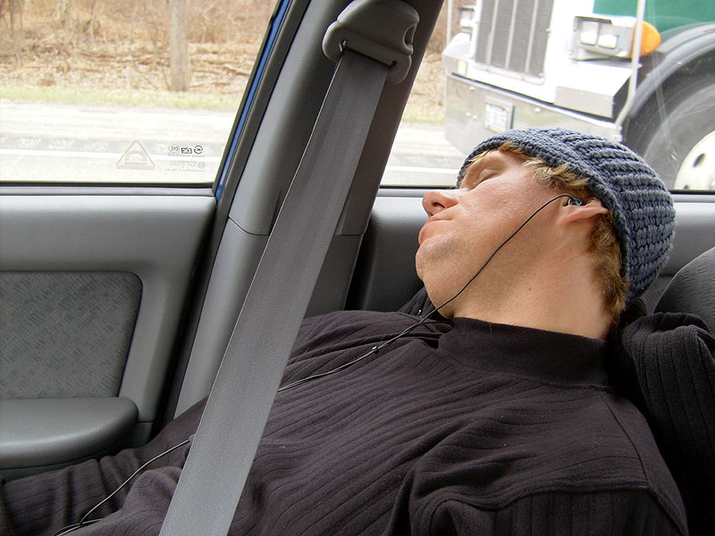 kurman sleeping in traffic on the turnpike