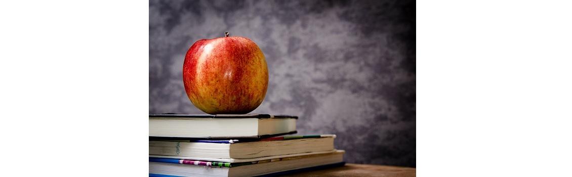 Teacher Quality Initiative