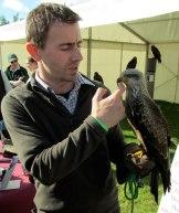 Falconry.