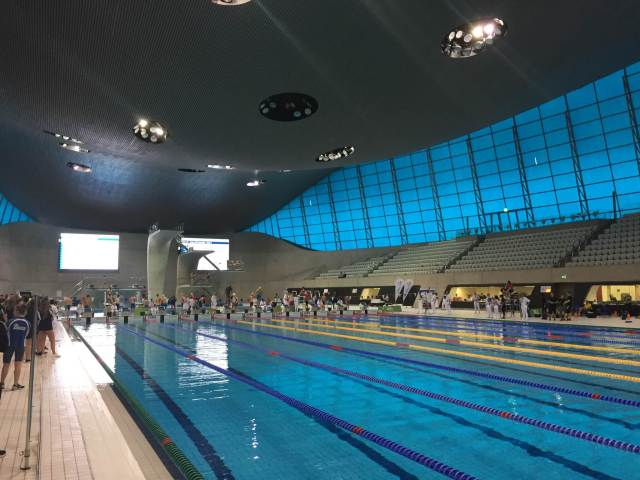 Olympic pool.jpeg