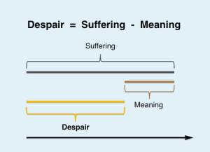 EMO Despair is suffering minus meaning