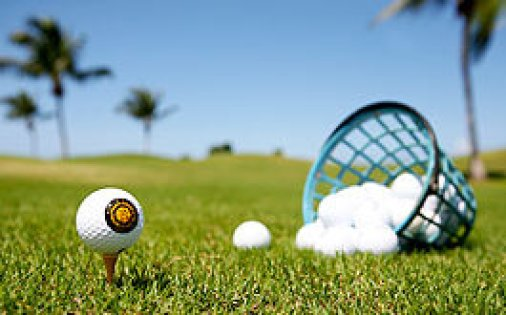 golf 265x165-basket-balls
