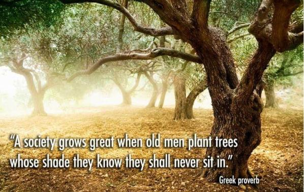 planting trees you will never see