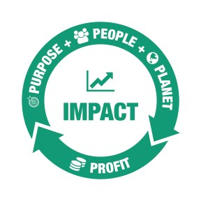 Purpose, People, Planet - Profit for Impact Triple Bottom Line Building Bridges for CEOs