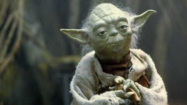 Yoda master Feldenkrais practitioner