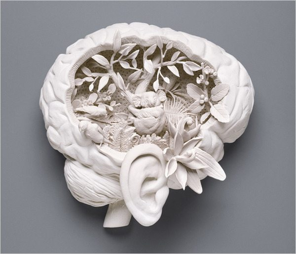 Image of brain after ecotherapy