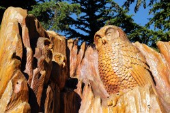 Owls carved from a tree trunk on Grouse Mountain, Vancouver