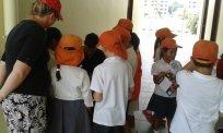 hornbill school