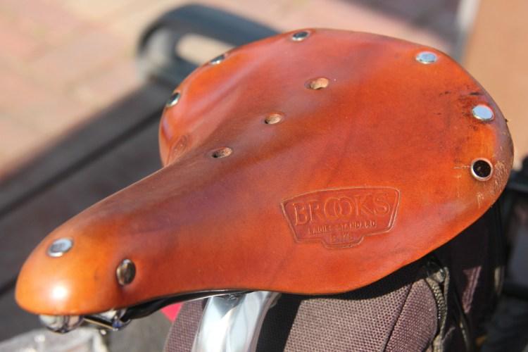 saddle-1