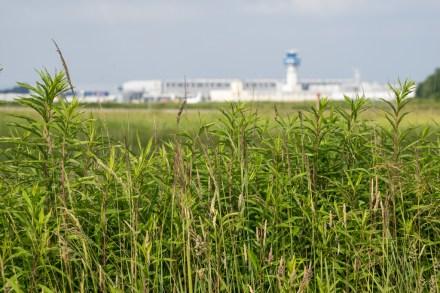 Cologne/Bonn Airport.