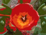 TULIP RED CUTOUT