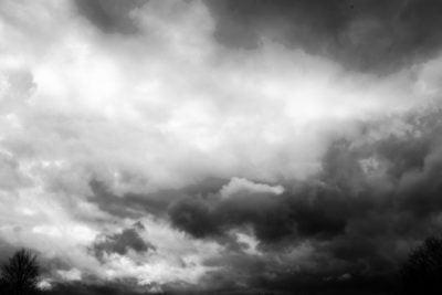Penchant For Rain