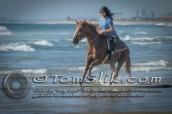 Horse Riding Imperial Beach Mexico Border 9-13-2015 0254