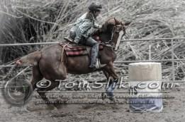 Jamul Gymkhana 4-29-20120413