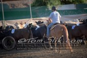 Lynn & Sam Team Cow Sorting 5-18-2016 0019