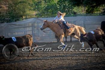 Lynn & Sam Team Cow Sorting 5-18-2016 0063