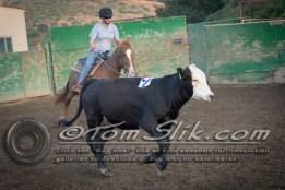 Lynn & Sam Team Cow Sorting 5-18-2016 0131