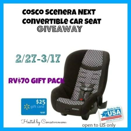 Car Seat Giveaway