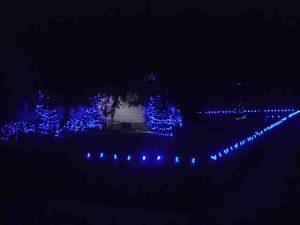 Christmas Light Ideas For Outside Archives Tom S Tek Stop
