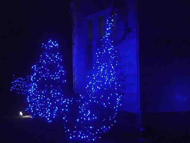 Blue Led Christmas Lights Decorating Outdoors Tips Examples Toms