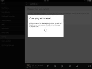 Screenshot of the -Changing Wake Word In Progress- window.