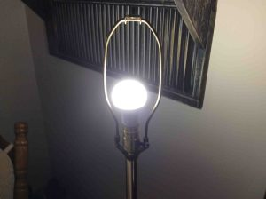 Picture of the Philips LED 75w A19 daylight white light bulb, glowing brightly.