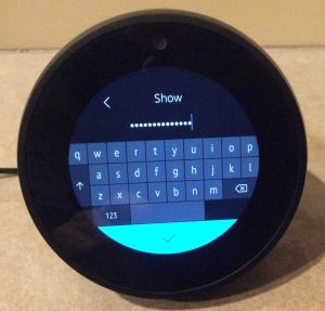 Picture of the speaker, showing its Amazon Account Password prompt screen, with the password field filled in and its characters hidden.