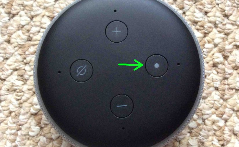Alexa Factory Reset Echo Dot Instructions