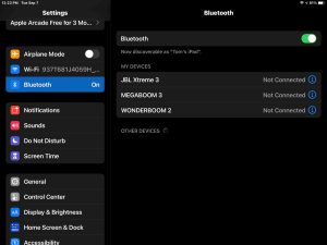 Screenshot of the iPadOS -Bluetooth Settings- page showing nothing discovered