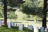 Gravestones at Arlington