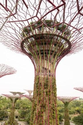 Singapore_GardensBay_0825