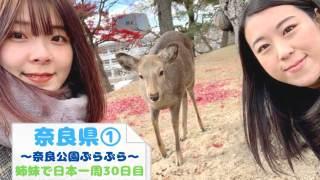 日本一周で奈良を観光