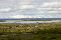 Lake Myrvaten landscape