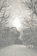 winter_fell_07