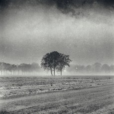 winter_eersel_02